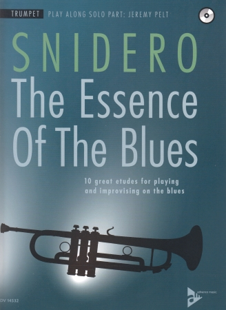 THE ESSENCE OF THE BLUES + CD