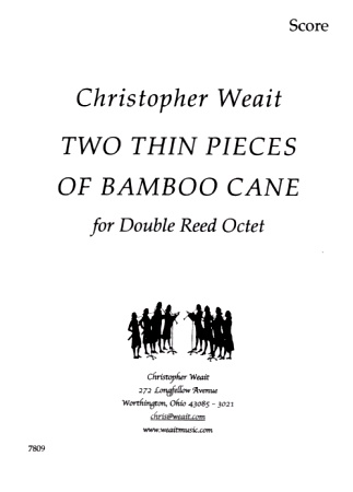 TWO THIN PIECES OF BAMBOO CANE
