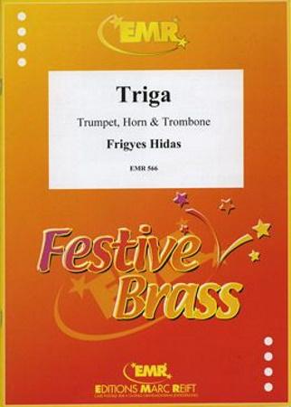 TRIGA score & parts