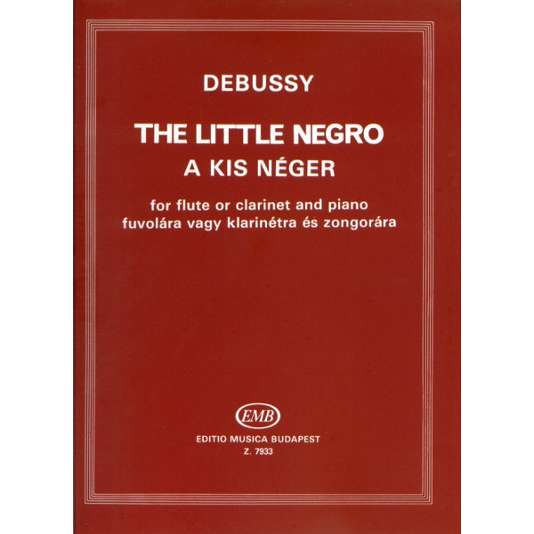 THE LITTLE NEGRO