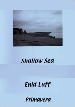 SHALLOW SEA WITH DANCING