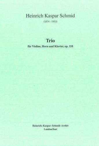 TRIO Op.110