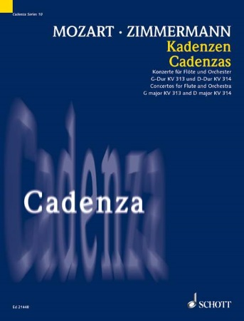 CADENZAS to the Concerto in G K313 and Concerto in D K314