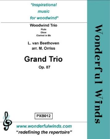 GRAND TRIO Op.87 (score & parts)
