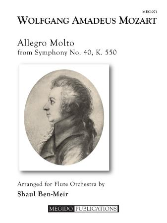 ALLEGRO MOLTO from Symphony No.40