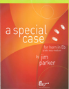 A SPECIAL CASE